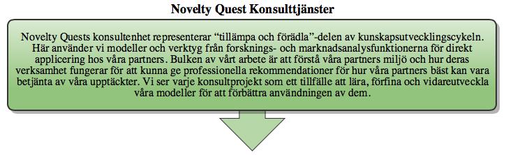 NQ konsulttjänster